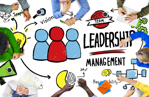 Infographic: Leadership and Management